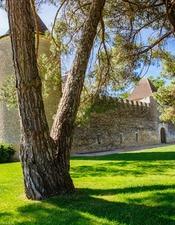 Château d'Yquem - SAUTERNES - Sud-Gironde