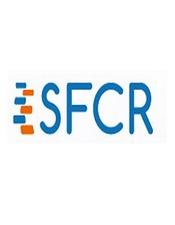 sfcr-2