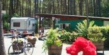 Camping Le Tedey - Lacanau