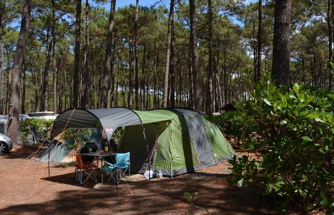 Camping Le Tedey 14 - Lacanau