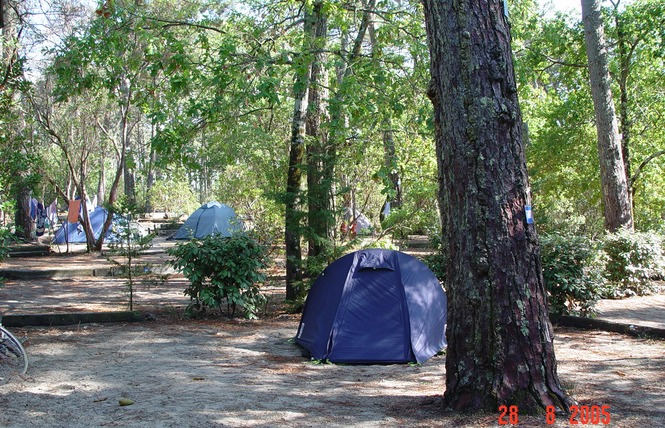 Camping Club D'arcachon 5 - Arcachon