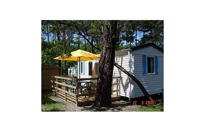 Camping Club D'arcachon 4 - Arcachon