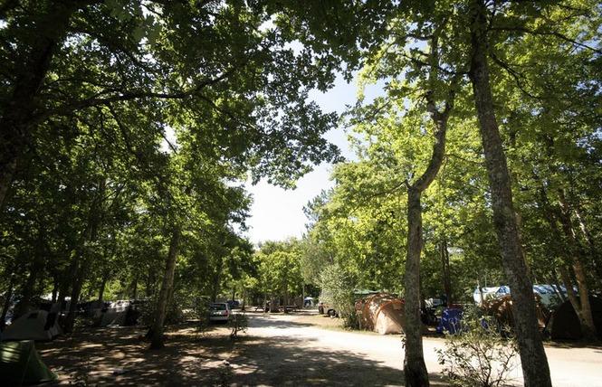 Camping Talaris Vacances 9 - Lacanau