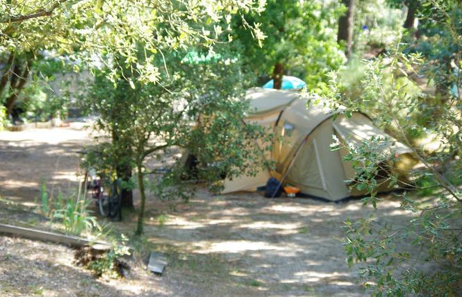 Flower Camping Des Pins 16 - Soulac-sur-Mer