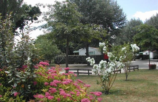 Camping Municipal Les Gabarreys 7 - Pauillac