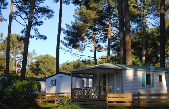 Camping De Maubuisson 1 - Carcans