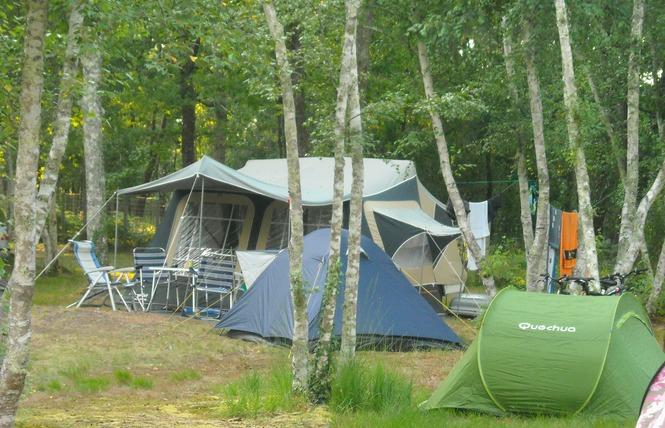 Camping Les Fougeres Lacanau 14 - Lacanau