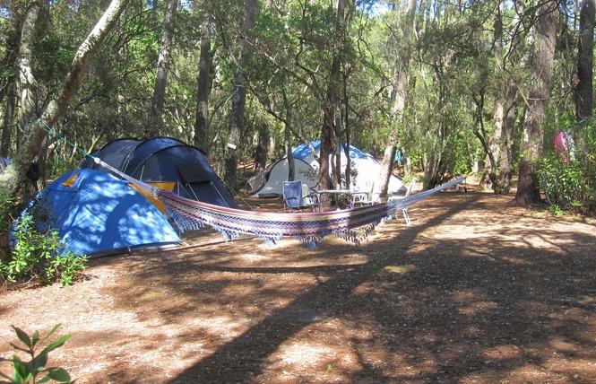 Camping de l'Ermitage 8 - Lacanau